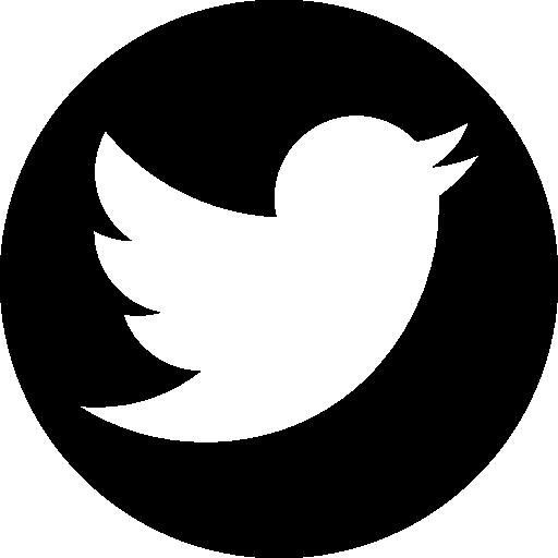 Actualités sur Twitter de Liv ha Luc'h, création graphique, audiovisuelle, photographie en Bretagne