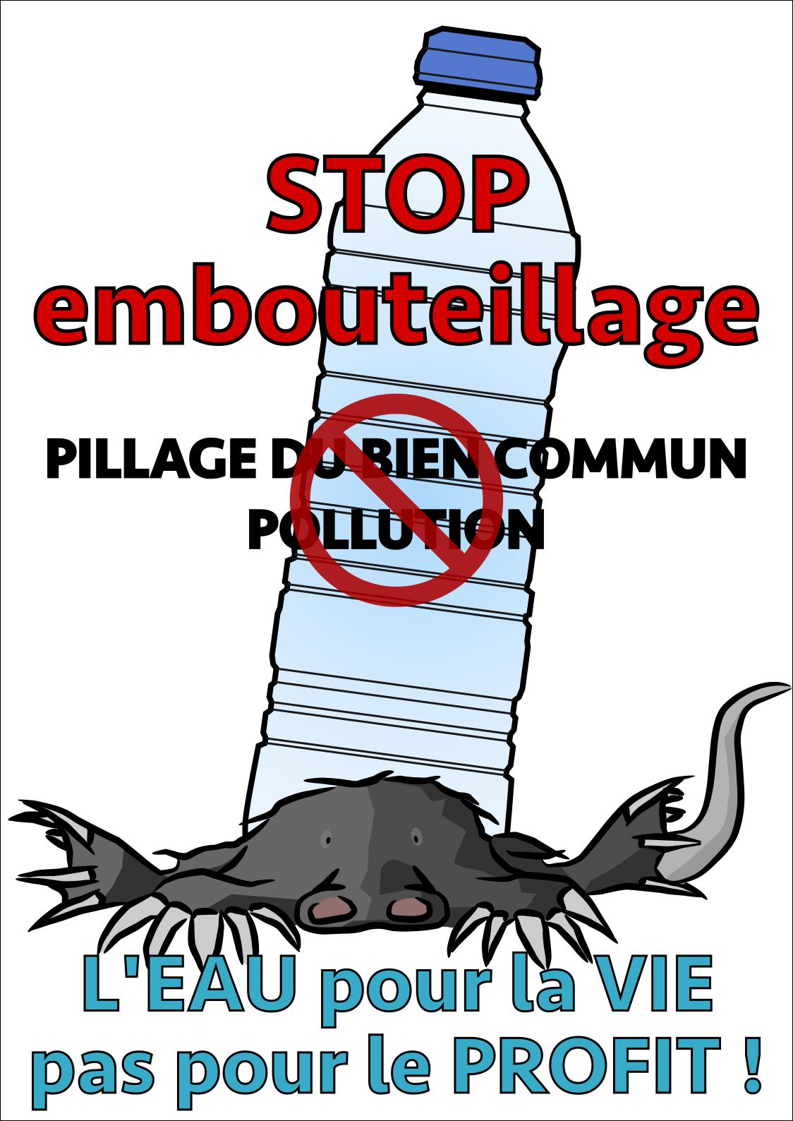 Affiche réalisée pour le collectif de défense du Desman des Pyrénées